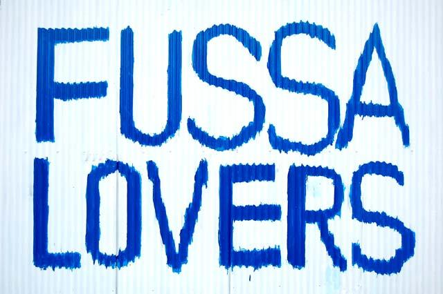 ARE YOU FUSSA LOVERS?