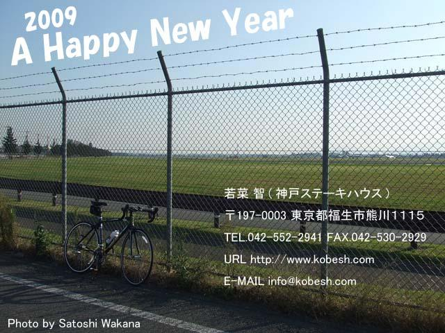 2009 A Happy New Year