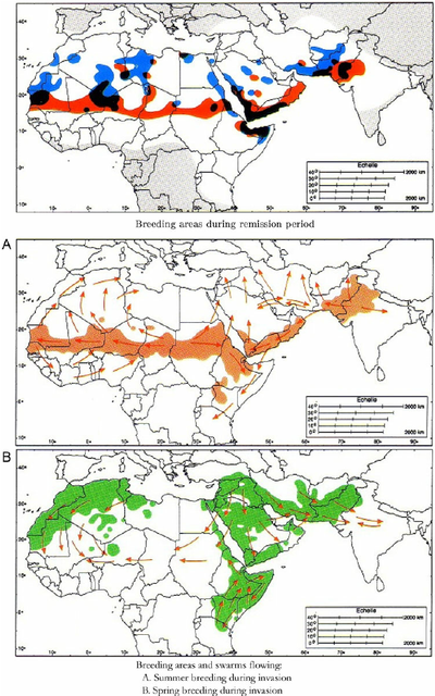 Locust-invasion-in-Africa-Source-Data-from.png