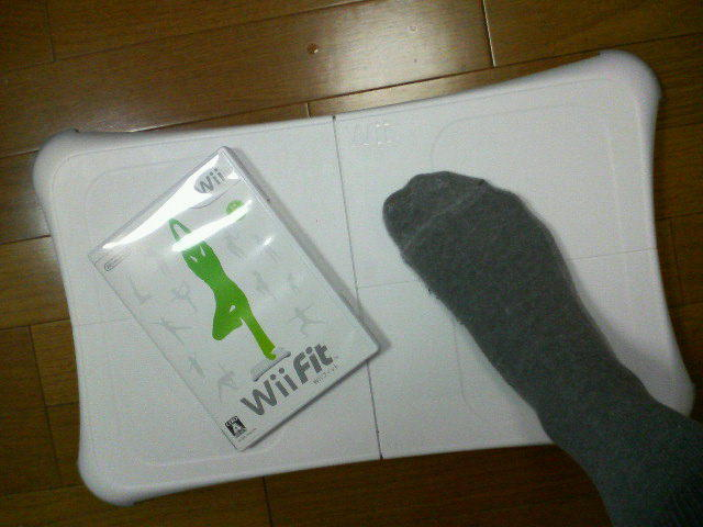 Wii Fit は楽しい♪