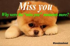 Miss You !