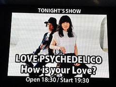 LOVE PSYCHEDELICO 『How is your Love?』