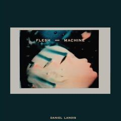 Flesh and Machine Daniel Lanois