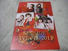 「SEASIDE LIVE FES 2013」