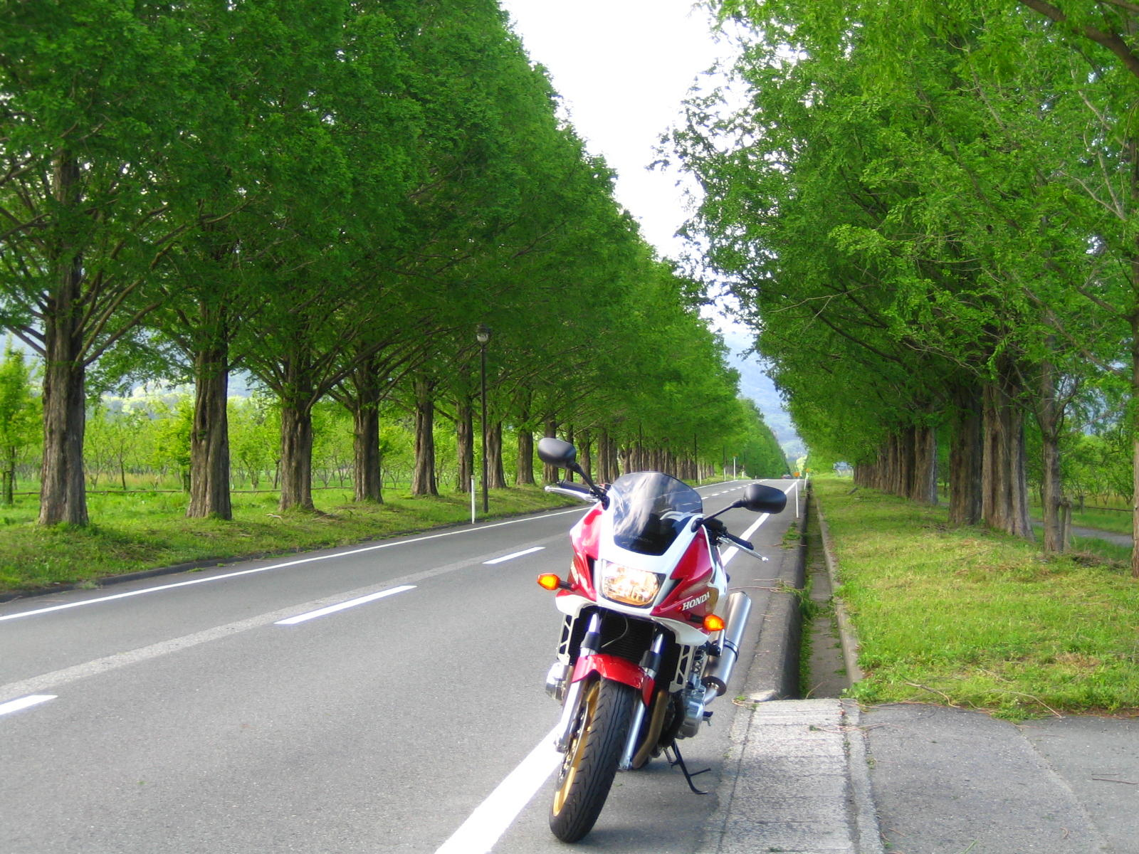 Bike Photo Collection第5回 道とBike