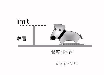 制限 ; limit、limitation とrestriction、constraint の違い