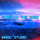 Magic Studio: Flash In The Dark