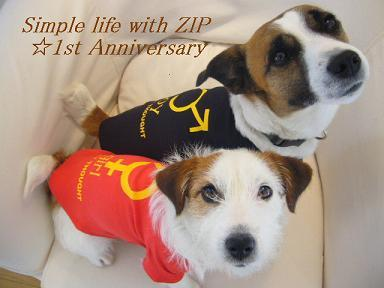 Simple life with ZIP☆1st Anniversary
