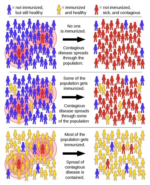 1200px-Herd_immunity_svg.png