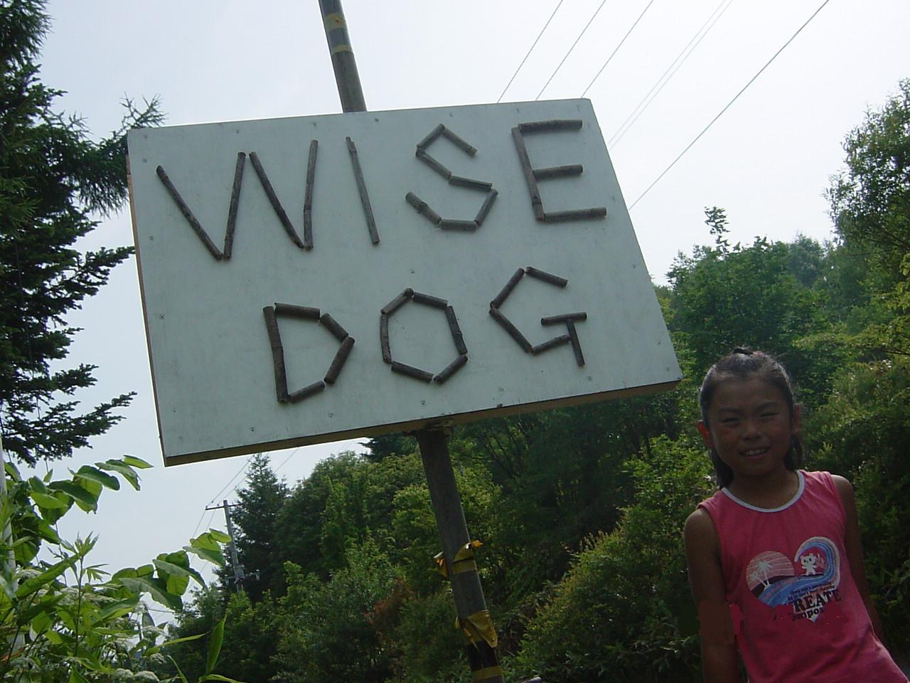 WISE DOGのときどき日記