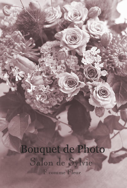 Bouquet de Photo * 1Day Special  募集のお知らせ