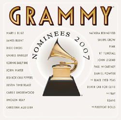 49th Grammy Awards