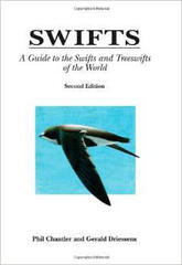 Swifts  Birds of the World