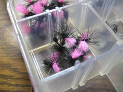 New Hackle Open!