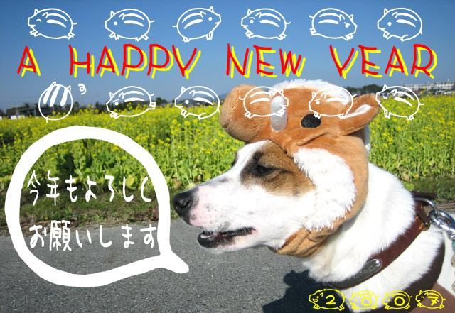 ☆★ A HAPPY NEW YEAR 2007 ★☆