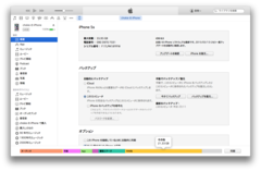 iTunes「その他」の削減には初期化も効果なし