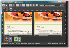 Microsoft Expression Web 3 SuperPreview