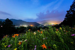 Lily Night Photography meeting in Tanigumi