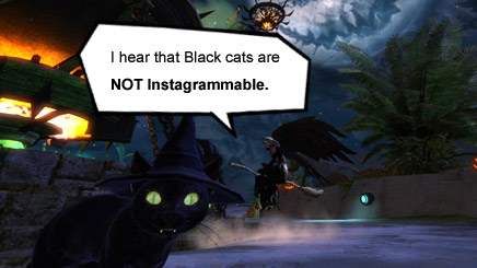 Black cats are not Instagrammable