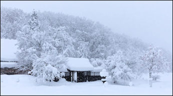 Japan Winter Scenery.jpg