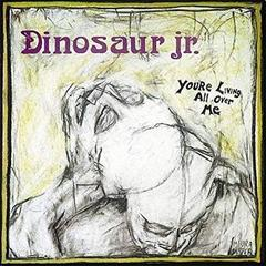 Dinosaur Jr 『You're Living All Over Me』(1987年)