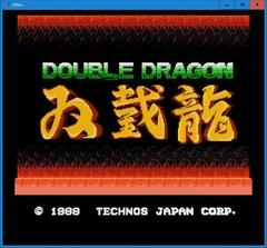 DOUBLE DRAGON  (3DNes)
