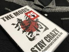 LIVE DVD「STAY CRAZY / THE MODS」