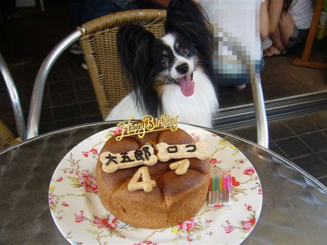 HAPPY BIRTHDAY  in  『cafe trois chiens』