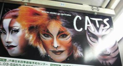 〜 CATS 〜