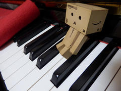 ダンボーのベッド(Danboard is looking for a cosy place)