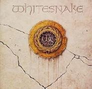 Still of the Night (Whitesnake)