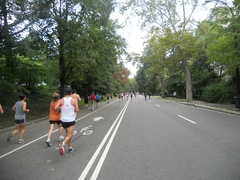 Run in the Central Park
