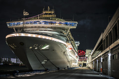 DIAMOND PRINCESS-神戸夜景-