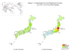 Radioactive Contamination Map in Japan