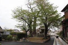 Yoshida Shrine 吉田宮 <香川県琴平町>