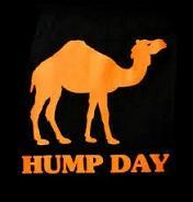 It's Hump Day. って?