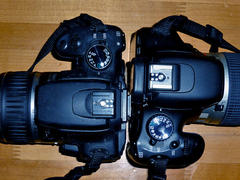 Canon EOS Kiss X4 と Canon EOS Kiss Digital N…