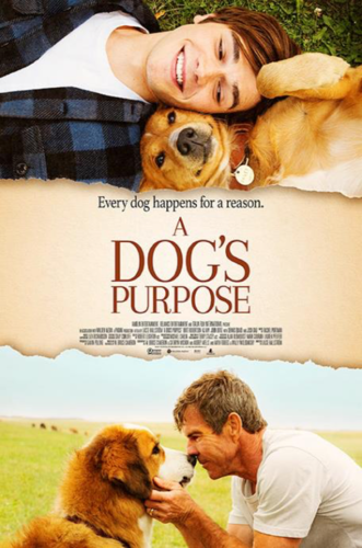 DogsPurpose.png