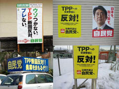 "Japanese Minister Abe Said ""No TPP"" But Now ""Yes!T"