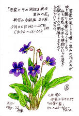 Plant Sketching Exhibition 四季の家で高橋長三郎植物スケッチ展 2015