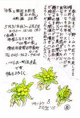 Plant Sketching Exhibition 四季の家で高橋長三郎植物スケッチ展 2017