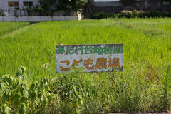 Children's farm こども農場