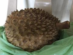 DURIAN!!!!!!!