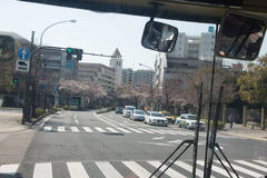 Cherry-blossom viewing bus 桜から桜へ花見バス