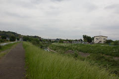 Cycling road 鶴見川サイクリングロード