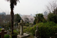The Yokohama Foreign General Cemetery 横浜外国人墓地
