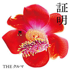 THE クルマ/証明
