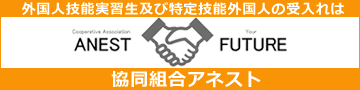 banner-anest (002).png